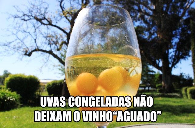 uvas congeladas vinho